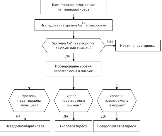 схема диагностики гипопаратиреоза